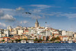Bosphorous cityscape with Galata Tower over the Golden Horn in Istanbul, Turkey