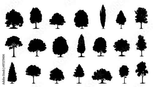 tree silhouettes - 97379414
