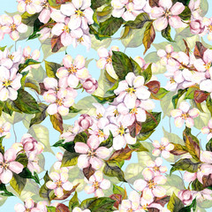 Fototapeta Seamless floral pattern with white fruit tree flower - cherry blossom on blue sky background. Watercolour art