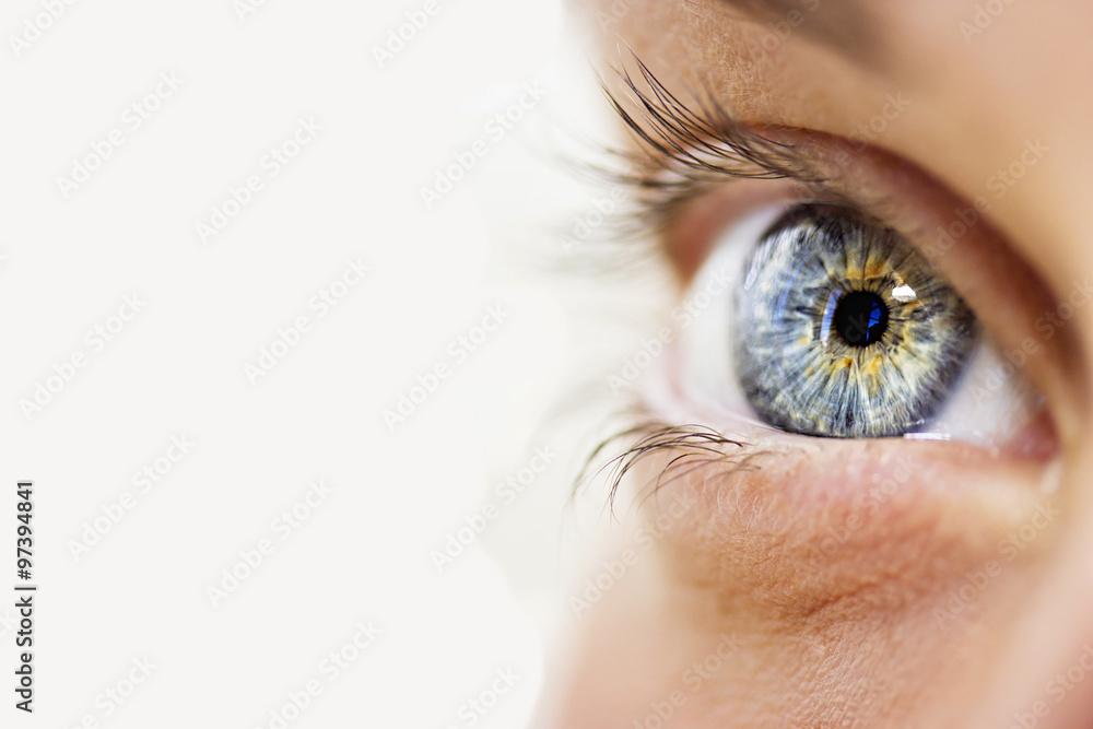 Fotografie, Obraz  Bystrý vzhled modré oči
