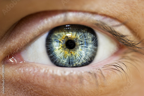insightful look blue eyes Canvas Print