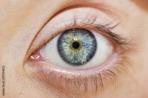 Obraz na plátně Bystrý vzhled modré oči