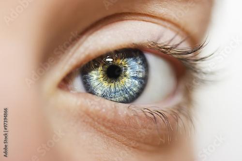 Fototapeta Bystrý vzhled modré oči
