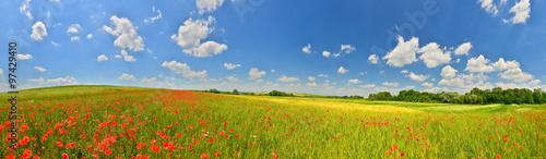 Foto auf Gartenposter Landschappen Summer countryside panorama