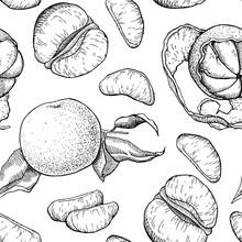 Vector Hand Drawn Mandarin Seamless Pattern
