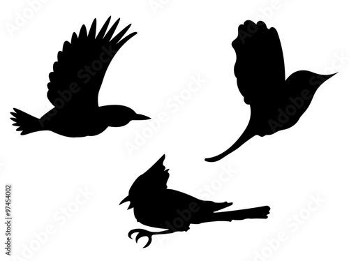 Cuadros en Lienzo Birds Silhouettes. Vector EPS 10.