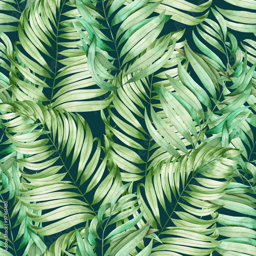 A seamless pattern with the branches of the leaves of a palm painted in watercolor on a dark green background