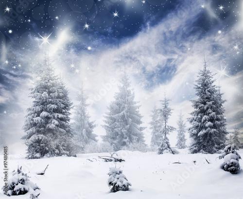 Naklejki na drzwi Zimowy pejzaż z ośnieżonymi jodłami