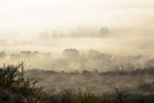 In The Autumn In Fog
