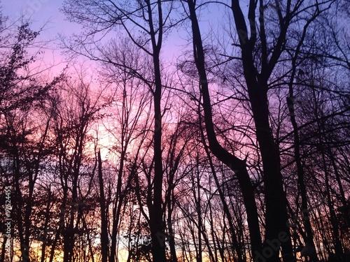Fotografie, Obraz  dramatic December sky at sunset