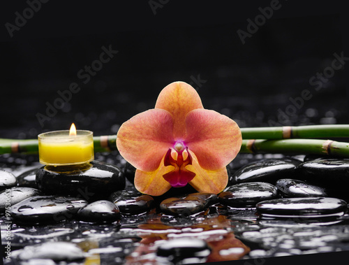 Poster Spa Set of orchid with candle, bamboo grove on wet background