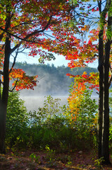 FototapetaSunrise above forest lake