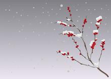 Season Winter. Branch Berries Under Snow