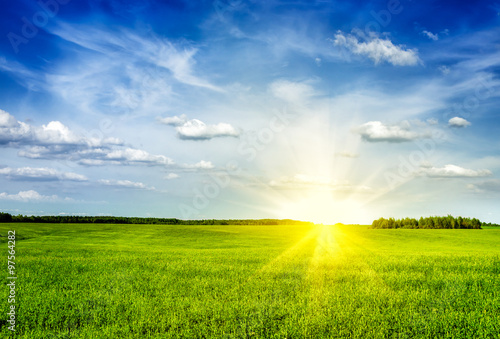 Foto op Canvas Platteland Spring summer green field scenery lanscape