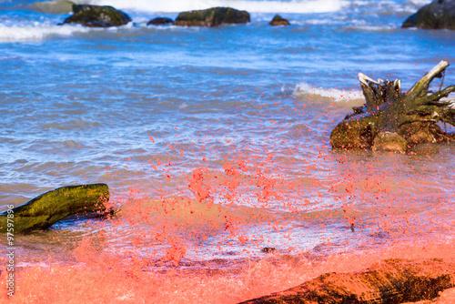 Photo  Red water splash