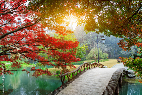 Fototapety, obrazy: Beautiful maple leaves and Small bridge in Chinese garden during Fall season
