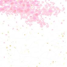 桜 和紙風テクスチャ