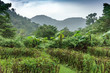 Scenic view of mountains in foggy weather, Costa Rica