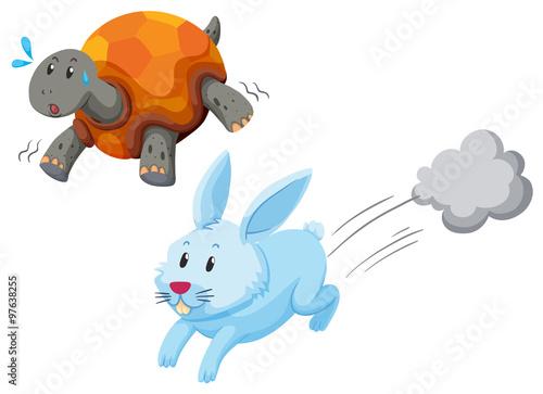 Cuadros en Lienzo Turtle and rabbit racing