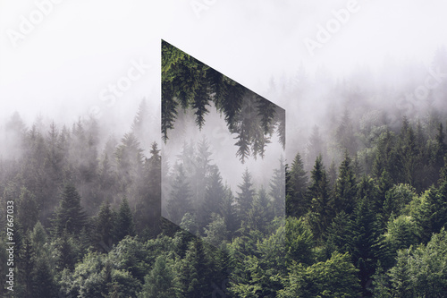 Spoed Foto op Canvas Grijze traf. Foggy Evergreen Forest with Inverted Polygon