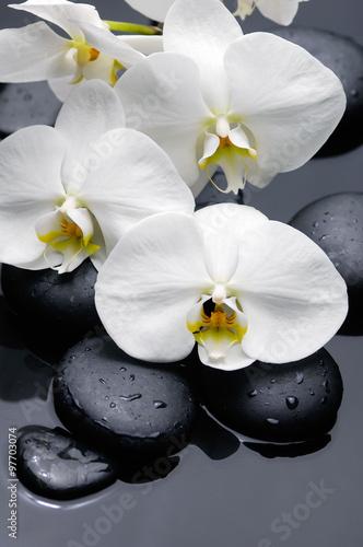 wciaz-zycie-z-gardenia-kwiatami-z-swieczka-na-terapia-kamieniach