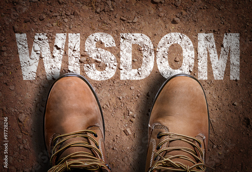 Top View of Boot on the trail with the text: Wisdom Canvas Print