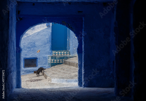 Canvas Prints Light pink Chefchaouen - Blue village in Morocco