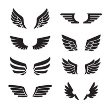 Wings Black Icons Vector Set. ...