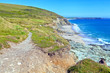 Cliff coastal path in South West England Cornwall
