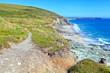 Cliff coastal path in South West England Cornwall