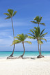 Caribbean beach Dominican Republic