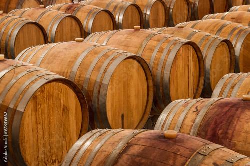 Photo  Rows of oak wine barrels in a winery cellar.