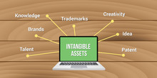 Intangible Assets Knowledge Brands