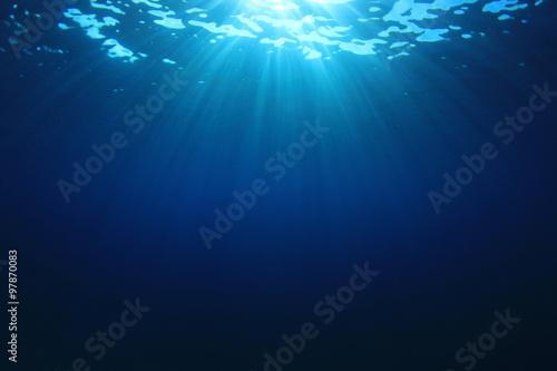 Underwater Sea Ocean Canvas Print
