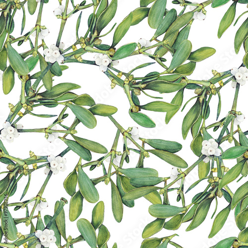 Fotografie, Obraz  Seamless background with green Christmas mistletoe holly branches