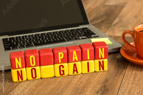 Fotografie, Obraz  No Pain No Gain written on a wooden cube in a office desk