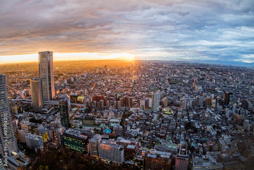 Fototapeta 東京新宿からの風景 Building group of shinjuku, Tokyo, Japan