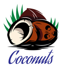 Picture With Three Broken Coconuts