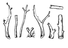 Set Of Branches.