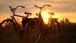 Vintage bicycles at sunset