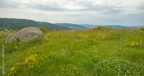 Foto auf Gartenposter Hugel Meadows in mountains in summer