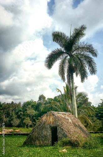 Fotografie, Obraz Typical home of native people of Caribbean