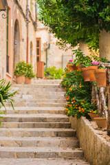FototapetaSchöne Stein Treppe mit Topfpflanzen Dekoration