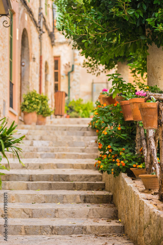 Fototapety, obrazy: Schöne Stein Treppe mit Topfpflanzen Dekoration