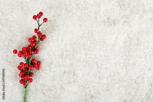 Fotografie, Obraz  mistletoe on snow