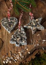Homemade Little Birdseed Christmas Ornaments. Fir Tree, Heart And Star Shapes.