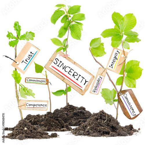 Fotografia  Plant Tag Concept