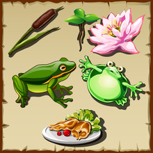 Great Frog Kingdom, Set Of Objects Related