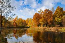 Złota Polska Jesień - Park Trzy Stawy W Katowicach