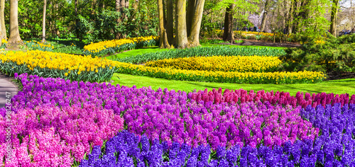 amazing floral park Keukenhof in Holland